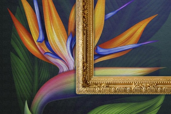 MACtac WallWrap Canvas